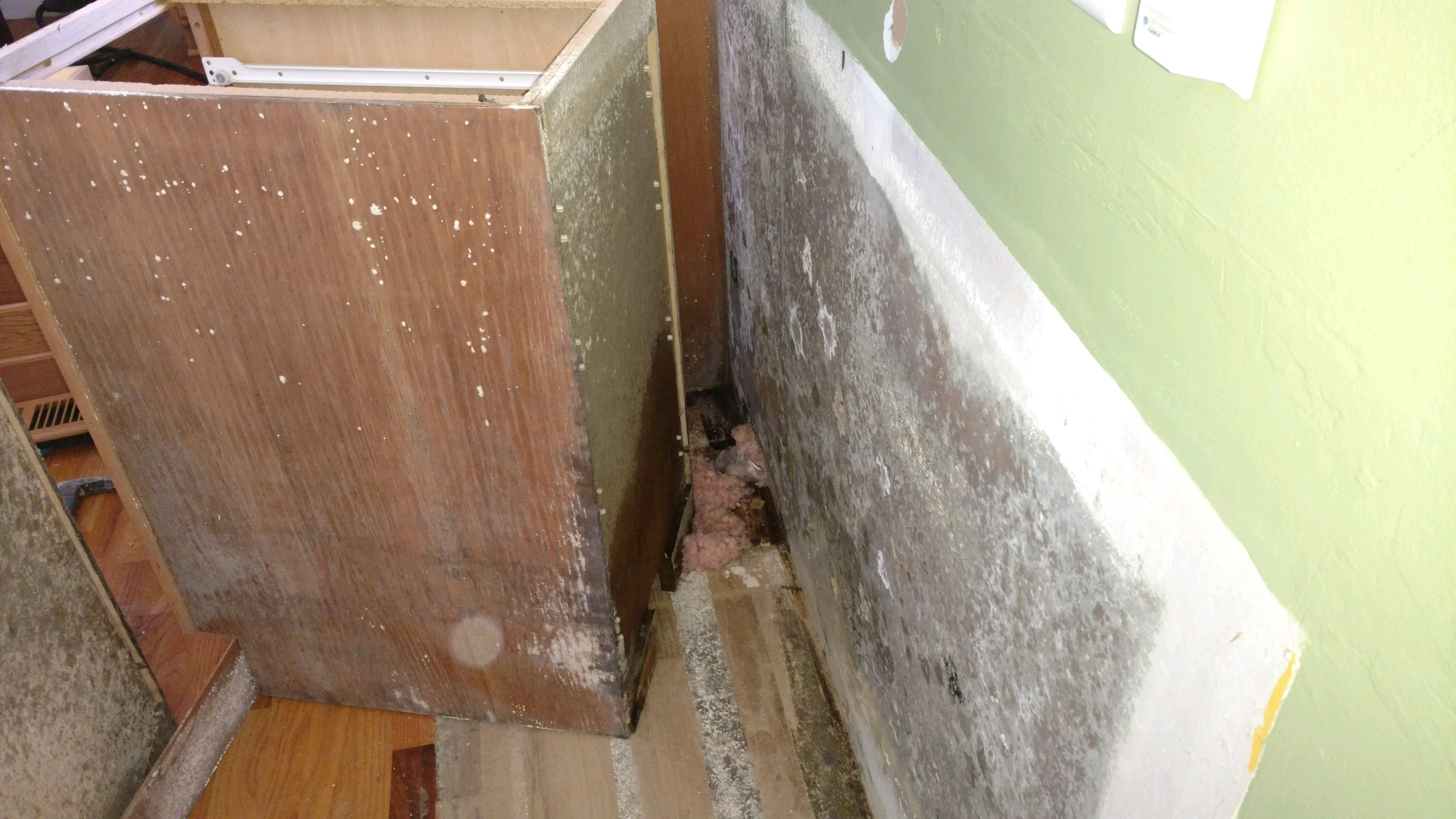 Mold Growth Beside and Behind Cabinet