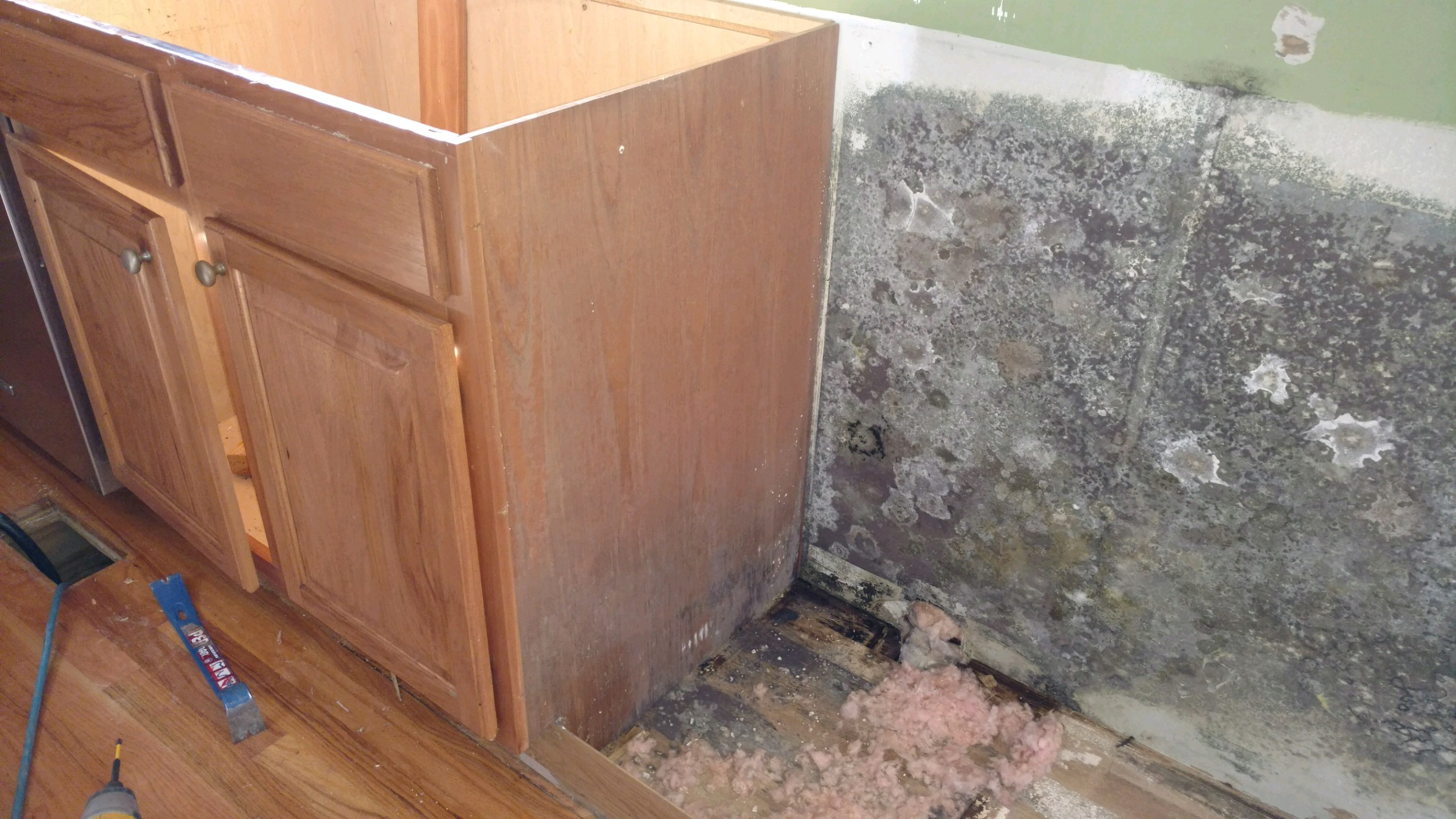 Mold Growth Beside Cabinet