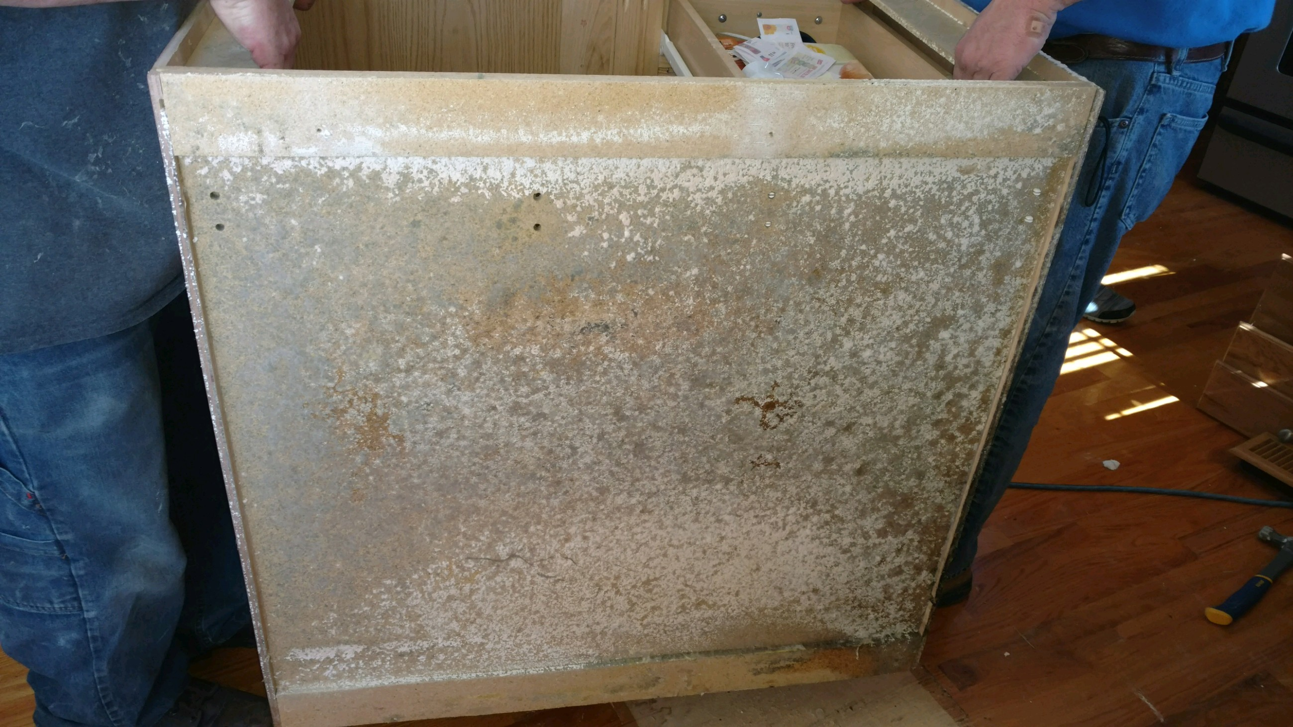 Mold Growth on Back of Cabinet
